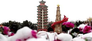 甘肅:春雪落高原