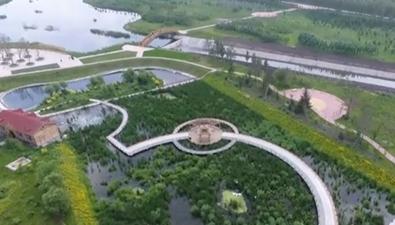 夏季黑龍江的五彩畫卷