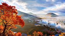葉落知秋,在詩詞中遇見最美的深秋