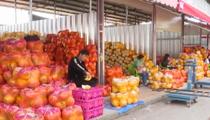 雲南:水果價格下行 節前漲幅不大