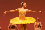 與芭蕾共舞