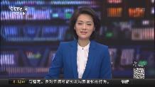 """日本:500猴子報團取暖 上演""""猴抱團""""奇觀"""
