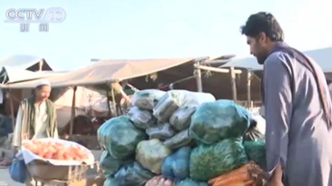 巴基斯坦:阿富汗難民——不希望孩子重復我的人生