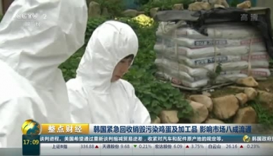 韓國緊急回收銷毀污染雞蛋及加工品