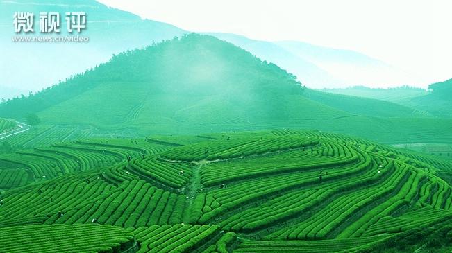 【新華微視評】普洱 綠色理念引領綠色發展