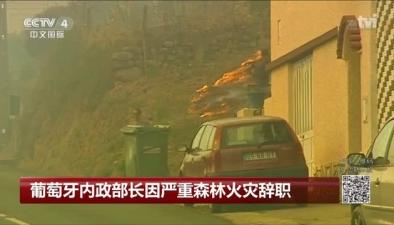 葡萄牙內政部長因嚴重森林火災辭職
