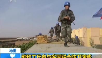 馬裏:維和工兵參與多國聯合防衛演練