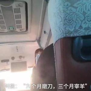 """黑龍江""""雪鄉導遊宰客""""視頻:已確認涉事旅行社及導遊"""