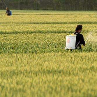 [經濟半小時]農業即將到來的顛覆
