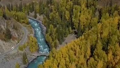 新疆:喀納斯秋色濃鬱
