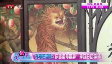 《神奇動物2》來襲