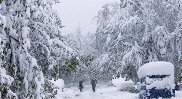 摩爾多瓦降春雪(組圖)