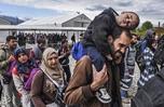 報告:2020年德國或有4萬難民成大學新生