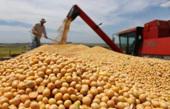 新華網評:掄起貿易保護主義大棒 傷害的終將是美國自己