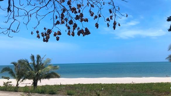 那空是貪瑪叻:泰南二線城市的寂落與豐饒