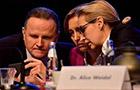 德媒稱右翼選擇黨涉嫌收取非法政治獻金