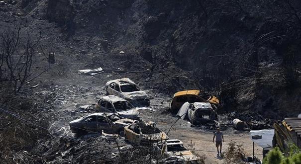 黎巴嫩:山林大火過後