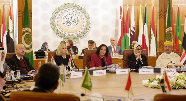 阿拉伯國家衛生部長高度讚賞中國防控新冠疫情努力