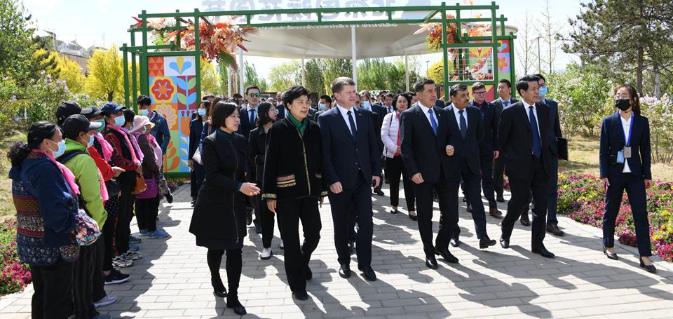 上海合作组织秘书长及相关国驻华使节代表盛赞北京冬奥会筹办工作