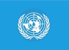 聯合國概況